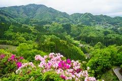 Vue de panorama et de ville de montagne de verdure de loin avec les nuances o Photographie stock libre de droits