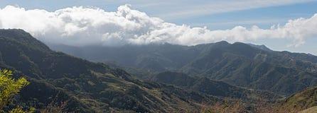 Vue de panorama de paysage de forêt tropicale dans le monteverde Costa Rica Photos stock