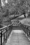 Vue de parc photographie stock libre de droits