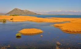 Vue de parc national de Skadar l'été Photographie stock libre de droits