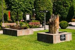 Vue de parc de Palas, Iasi, Roumanie Photographie stock libre de droits