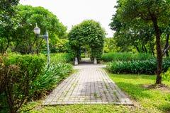 Vue de passage couvert, jardin botanique Photos stock