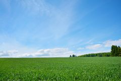 Vue de paysage de paysage avec les prés verts et le ciel bleu un jour d'été sur la station thermale climatique certifiée Gaiberg  photos stock