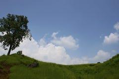 Vue de paysage luxuriant de colline verte avec des nuages comme fond dans le maharashtra rural images libres de droits