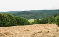 Vue de paysage rural images stock