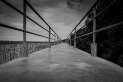 Vue de perspective de pont concret avec la barrière en métal sur la forêt de palétuvier contre le ciel et les nuages gris dramati image libre de droits