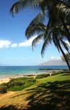 Vue de plage avec des palmiers photo stock