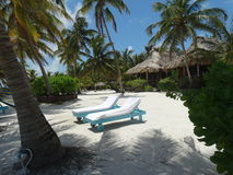 Vue de plage bélizéenne Image libre de droits