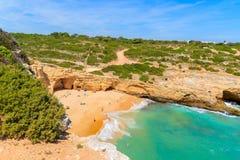 Vue de plage dans la belle baie Image stock