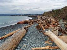 Vue de plage dans Victoria Images stock