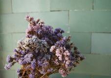 Vue de plan rapproché de bouquet sec de fleur Images stock