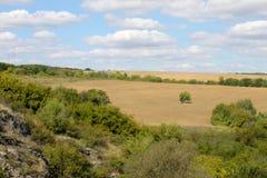 Vue de plantation de blé d'en haut Image stock