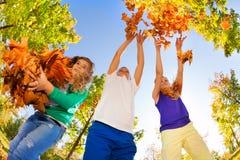 vue de Poisson-oeil des amis jouant avec des feuilles Images libres de droits