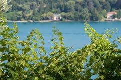 Vue de policier de lac Photos libres de droits