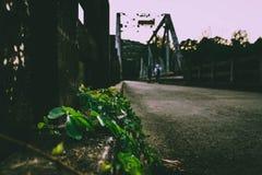 Vue de pont Image stock