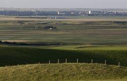 Vue de prairie de mâchoire d'orignaux photo libre de droits