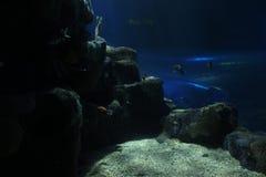 Vue de profondément d'océan image stock