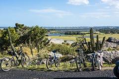 Vue de Punta del Este d'EL Faisano, Uruguay Photographie stock