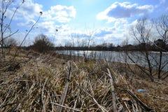 Vue de ressort de la rivière Photos stock