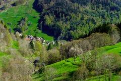 Vue de ressort de montagnes de Schwarzwald, jour ensoleillé photos stock