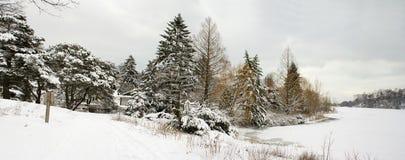 Vue de rivage de lac winter avec les arbres nus de neige Photographie stock libre de droits