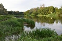 Vue de rivière Photographie stock