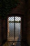 Vue de rivière d'Odra d'île de Tumsky à Wroclaw Image libre de droits
