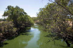 Vue de rivière de cygne de piéton de Maali et de pont de cyclistes dedans Image libre de droits