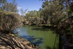 Vue de rivière de cygne en Maali Bridge Park, région de vin de vallée de cygne, W Photo stock