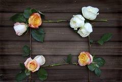 Vue de Rose sur le vieux bois de grange Photos libres de droits