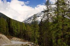 Vue de route par le parc national suisse dans la journée de printemps ensoleillée Endroits scéniques de la Suisse images libres de droits