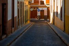 Vue de rue en ville de Santa Maria de Guia Photographie stock