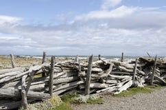 Vue de Seno Otway - Patagonia - le Chili Photographie stock