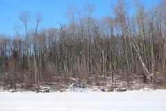 Vue de Shoreline tandis que pêche de glace dans Alberta du nord Image stock