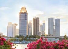 Vue de Singapour central Images libres de droits