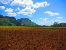 Vue de site d'héritage de l'UNESCO du Cuba de vallée de vinales photo libre de droits