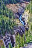 Vue de Skywalk, jaspe, Alberta Photographie stock libre de droits