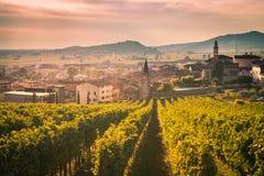 Vue de Soave Italie entourée par des vignobles photos stock