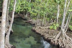 Vue de source thermale/de plage voisine de la piscine ao Nang, Krabi, Thaïlande Photo libre de droits
