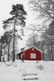 Vue de Suédois de l'hiver Photographie stock