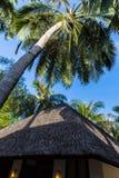Vue de suite de Sandy à la station de vacances Maldives de quatre saisons chez Kuda Huraa Images libres de droits