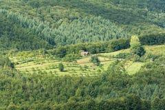 Vue de terre de ferme de montagne Image libre de droits