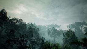 Vue de Timelapse au-dessus d'une belle jungle verte luxuriante rendu 3d Photographie stock libre de droits