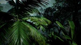 Vue de Timelapse au-dessus d'une belle jungle verte luxuriante rendu 3d Images stock