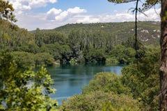 Vue de traînée d'arbre en parc national de la Croatie sur le lac dans les montagnes photographie stock