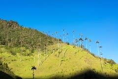 Vue de vallée de Cocora Photographie stock