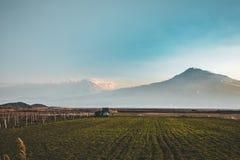 Vue de vallée d'Ararat d'Arménie photo libre de droits