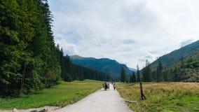 Vue de vallée de Koscielisko dans Tatras polonais Images libres de droits
