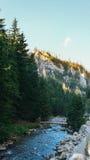 Vue de vallée de Koscielisko dans Tatras polonais Image stock