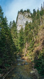 Vue de vallée de Koscielisko dans Tatras polonais Image libre de droits